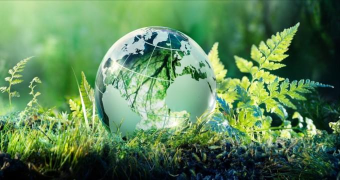 [Cuộc cách mạng thị trường xanh] Chủ nghĩa môi trường thân thị trường: Cách tốt nhất để bảo vệ hành tinh của chúng ta